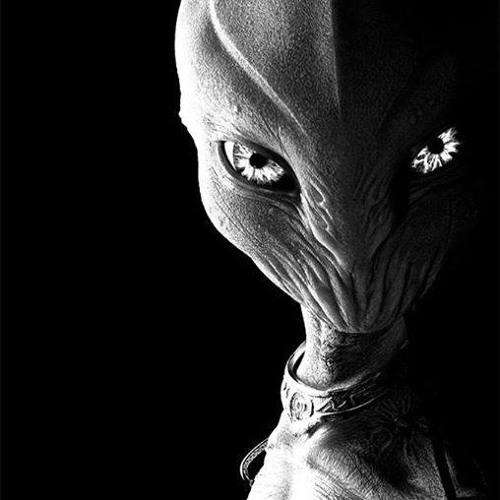 jean michel rey's avatar