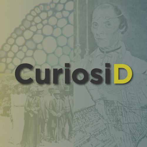 CuriosiD's avatar