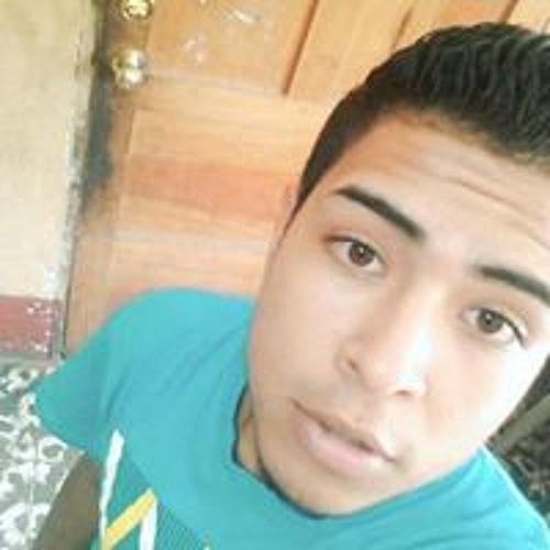 Luis Armando Roque's avatar