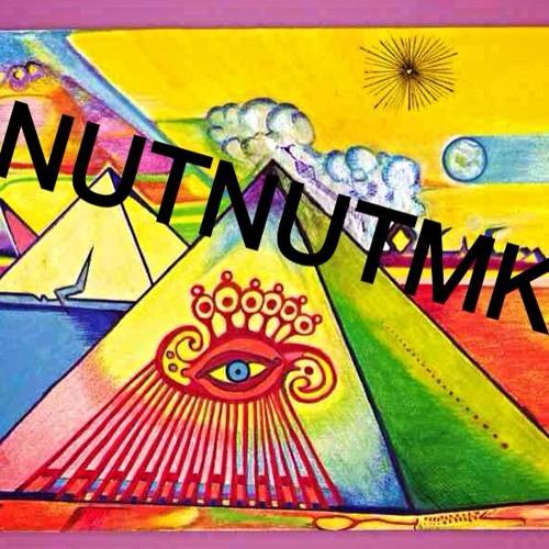 NutNutmk's avatar