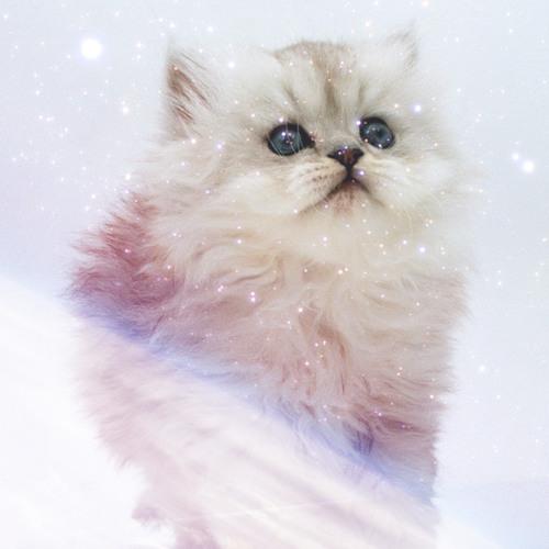 Datasuck's avatar