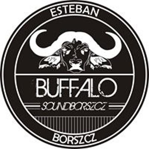 Buffalo Soundborszcz's avatar