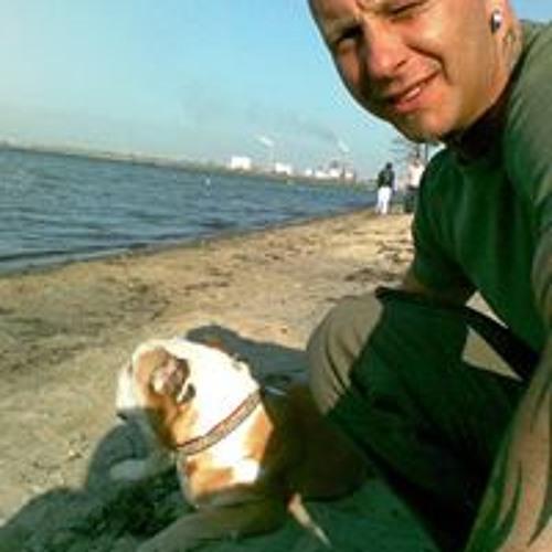 Daniel Schierer's avatar