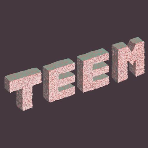 TEEM's avatar