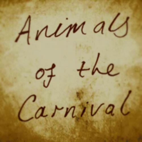 Animals of the Carnival's avatar