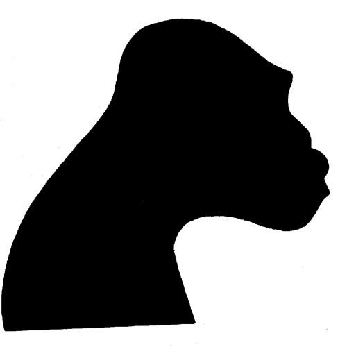 John Warwick 4's avatar