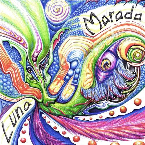 Luna Marada's avatar