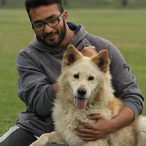 Malik Waleed Awan's avatar