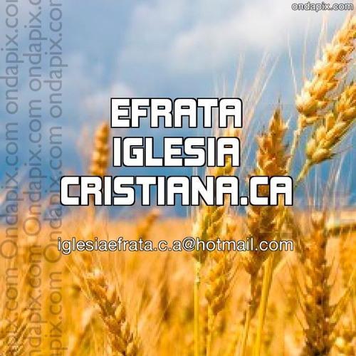 Iglesia Efrata.C-A's avatar