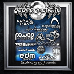 Geomagnetic Label Group