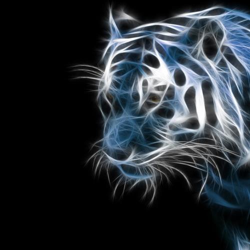 Jimmafied's avatar