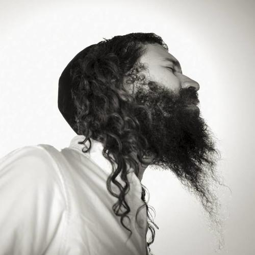 Shlomo Gaisin's avatar
