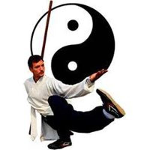 Wudang Kungfu's avatar