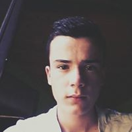 Florian Leplay's avatar