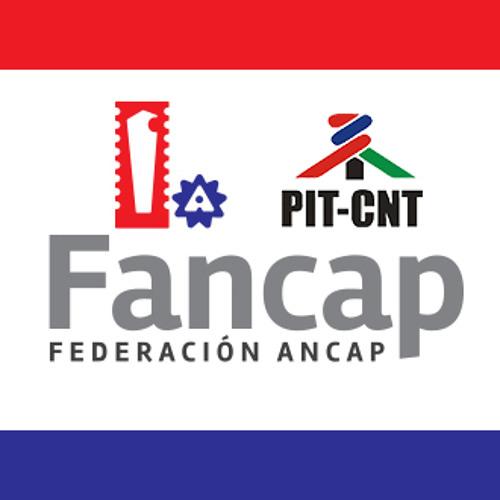 Federación ANCAP's avatar