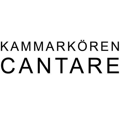 kammarkoren.cantare's avatar