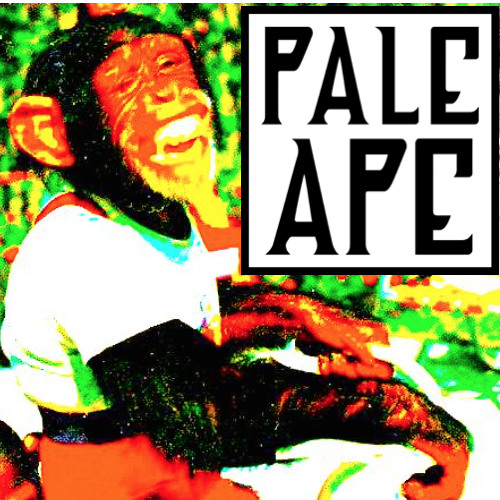 PaleApe's avatar