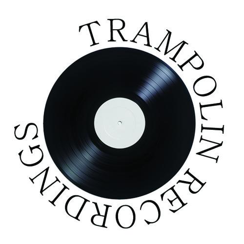 Trampolin Recordings's avatar