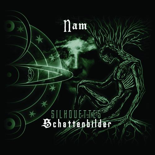 Ensemble-NAM's avatar
