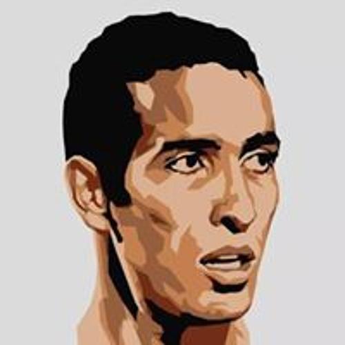 Mohamed Sobeh's avatar