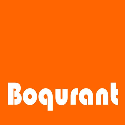 Boqurant [ambient music]'s avatar