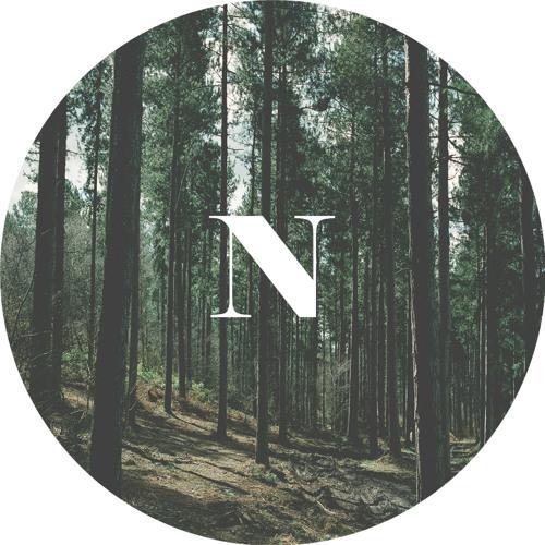 Ningzi's avatar