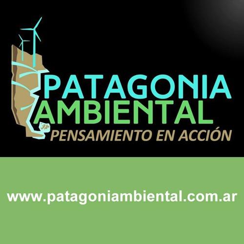 Patagonia Ambiental's avatar