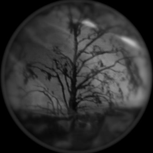 uncertain reverie's avatar