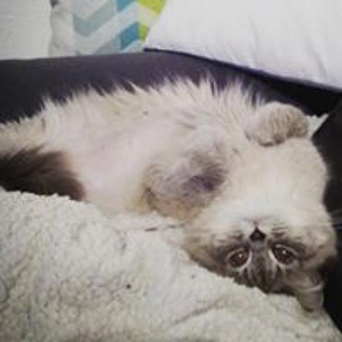 Pulpy Moûhmâh Cat's avatar