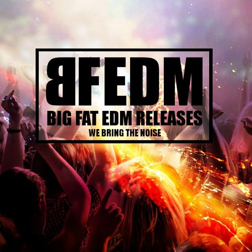 BIG FAT EDM RELEASES's avatar