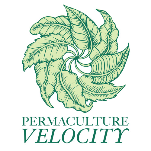 Permaculture Velocity's avatar