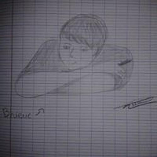 Brieuc Perrin's avatar