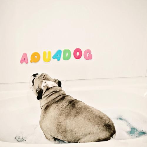 AquaDog Band's avatar