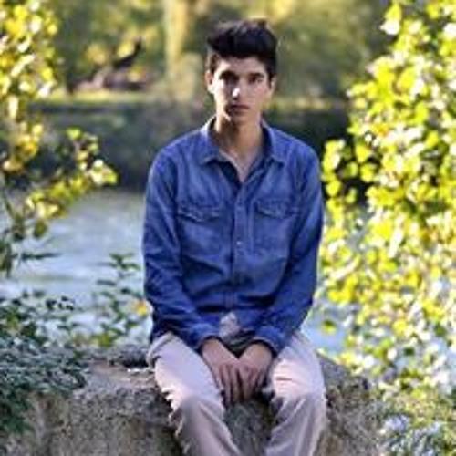 Luca Masullo's avatar