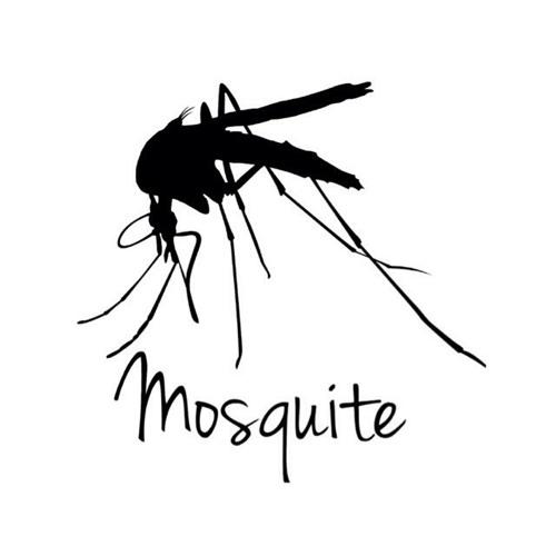 Mosquite's avatar
