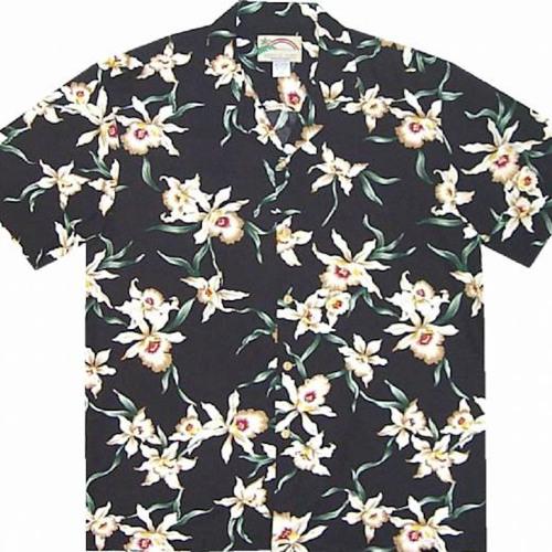 Hawaiian shirt's avatar