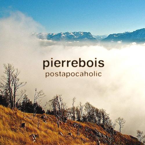 PierreBois's avatar