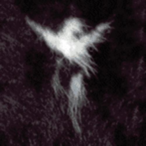 purplecabbage's avatar