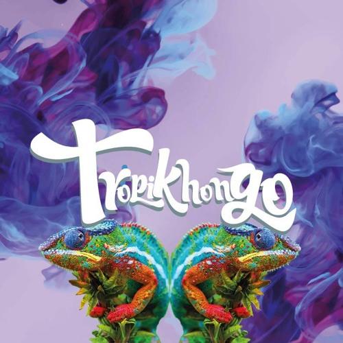 TROPIKHONGO's avatar