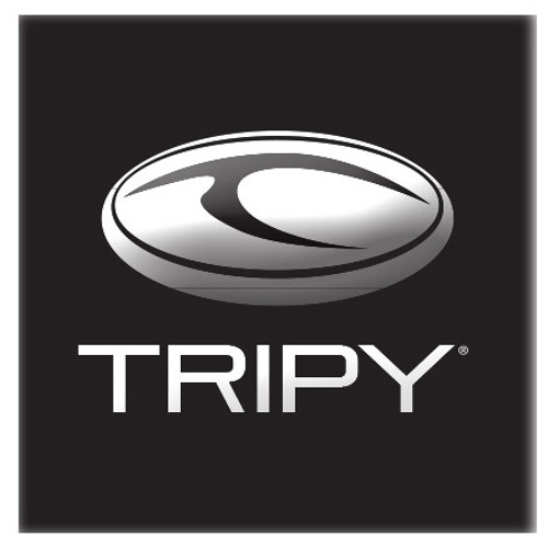Tripy DJ Summer Mix 2013 (Free Download Happy Xmas ! )