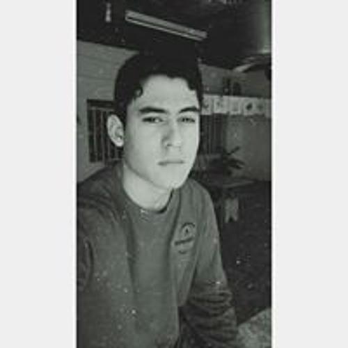 thedarckgames's avatar