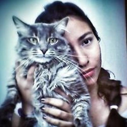 Laura Camila Numpaque's avatar