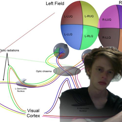 synaptic décor's avatar