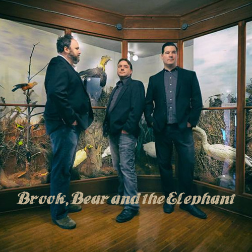 Brook Bear & the Elephant's avatar