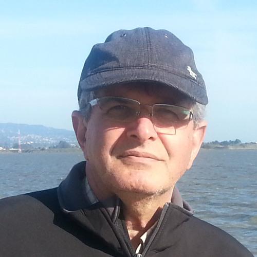 M Hosseini's avatar