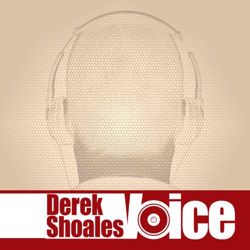 Derek Shoales's avatar