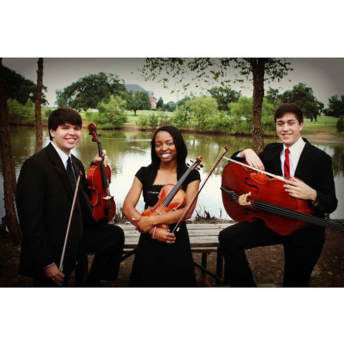 Upstate Strings Trio's avatar