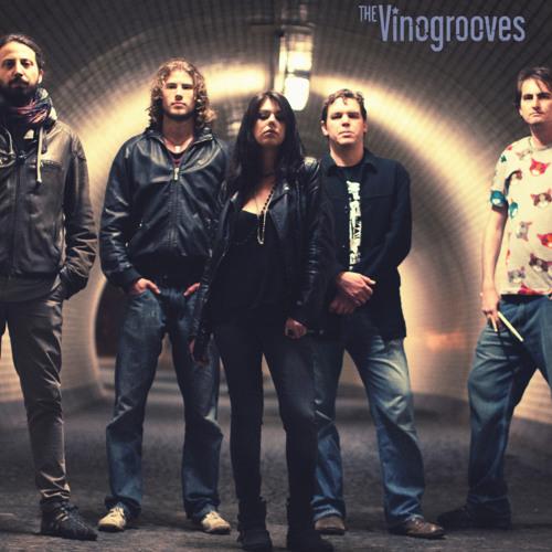 The Vinogrooves's avatar