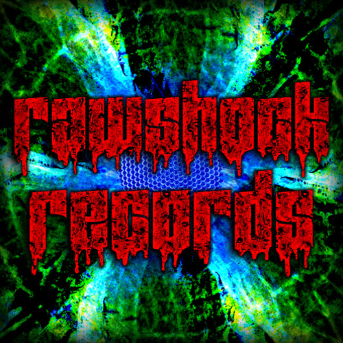 RawShock Recordings's avatar