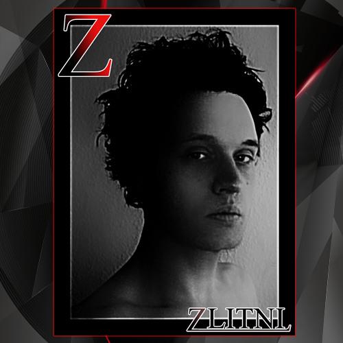 Zlitni & Co.'s avatar